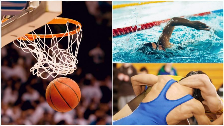 Wrestling, Swimming, and Basketball are some of the sports looking to make some noise this winter season at McQuaid.