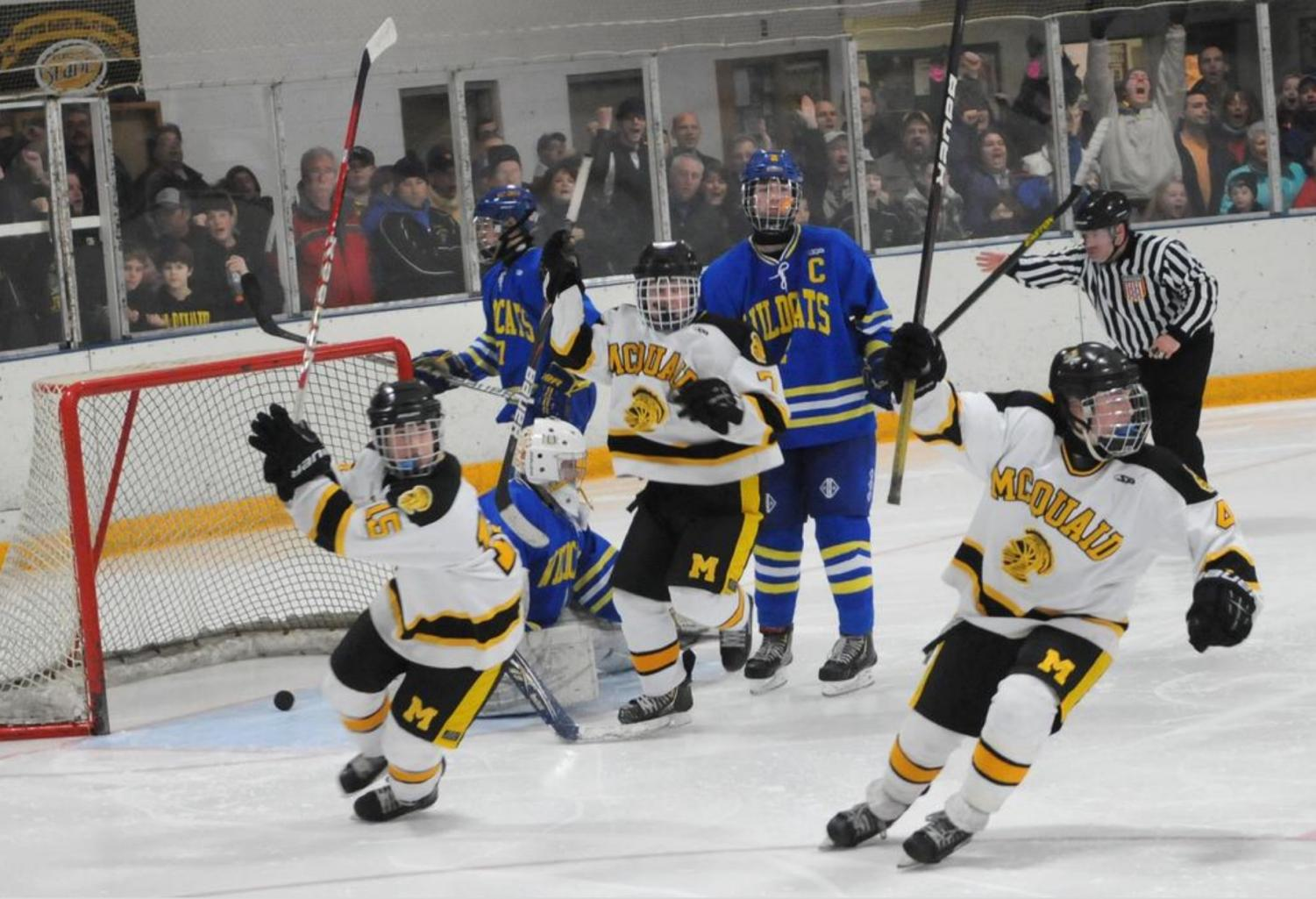The Hockey Knights celebrate after a goal.